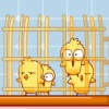 Игра Chick Shower