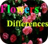 Game Flowers Differences