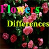 Игра Различные цветы