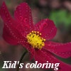 Игра Королевство цветов: Цветочный сад.