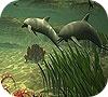 Игра Пятнашки: Дельфины