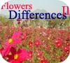 Game Flowers Differences 2