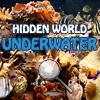 Игра Поиск предметов: Подводный мир