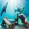 Игра Передвижной пазл: Морские обитатели