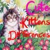 Игра Отличия: Котята