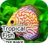 Игра Пазл: Тропические рыбки