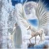 Игра Пять отличий: Фантастическая зима