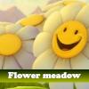 Игра Пять отличий: Цветочный луг