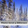 Игра Пять отличий: Зимний лес