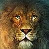 Игра Пазл: Король лев