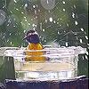 Игра Передвижной пазл: Дождь и птичка