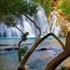 Игра Поиск отличий: Лесной водопад