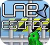 Игра Выход из лаборатории