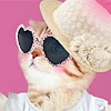 Игра Одевалка: Наряд для котенка