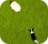 Игра Собака-пастух