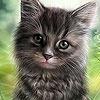 Игра Пятнашки: Котенок