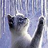 Игра Пятнашки: Котенок и сосульки