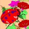 Игра Раскраска: Жук в саду