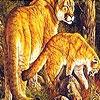 Игра Пятнашки: Огненные кошки
