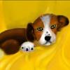 Игра Пазл: Маленький щенок