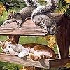 Игра Пазл: Сонный котик