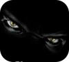 Игра Поиск предметов: Взгляд призрака