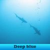 Игра Поиск предметов: Синяя глубина