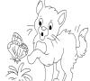 Игра Раскраска: Котик