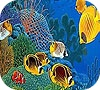 Game Perfect ocean fishes puzzle