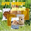 Игра Парные картинки: Миляги кролики