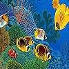 Игра Пазл: Морские рыбки