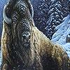 Игра Пазл: Зима и большой буйвол