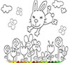 Game Small rabbit coloring