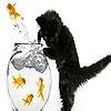 Игра Пазл: Черный кот и красные рыбки