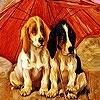 Игра Пятнашки: Собачки