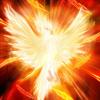 Игра Поиск отличий: Феникс