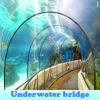 Игра Поиск предметов: Подводный мост