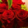 Игра Пазл: Красные розы