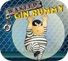 Game Gin Rummy