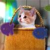 Игра Новый дом котенка