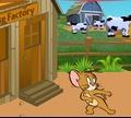 Игра Том и Джерри: Собери весь сыр