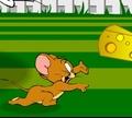 Игра Том и Джерри: Попасть домой