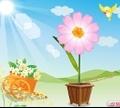 Игра  Магический цветок