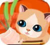 Game my sweet cat