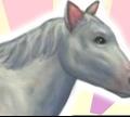 Игра Моя храбрая лошадь