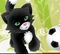 Игра Футбол кошек и собак