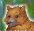 Игра Мой любимый медведь