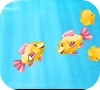 Game Match the fish pairs