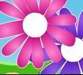 Игра Собери цветы