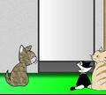 Игра Кошачий дом